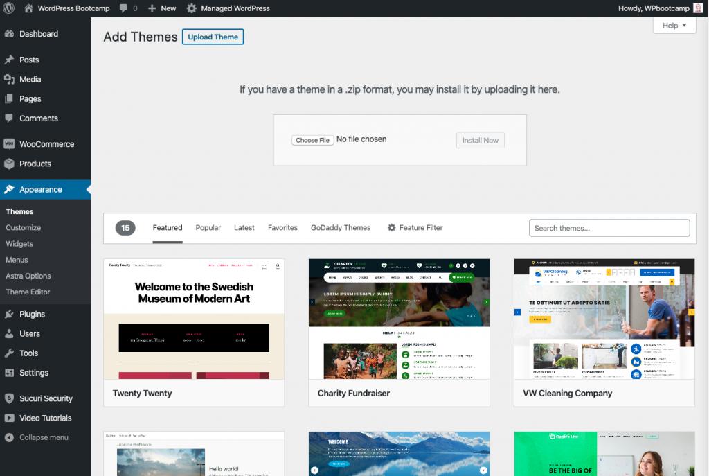 Install New WordPress Theme | AnitaM