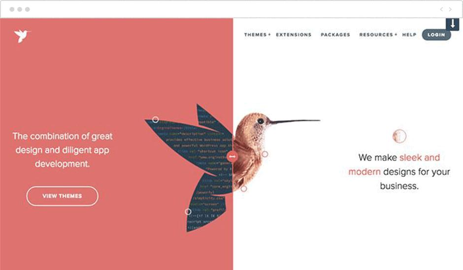 Vertical Split Web Design 2020 | AnitaM